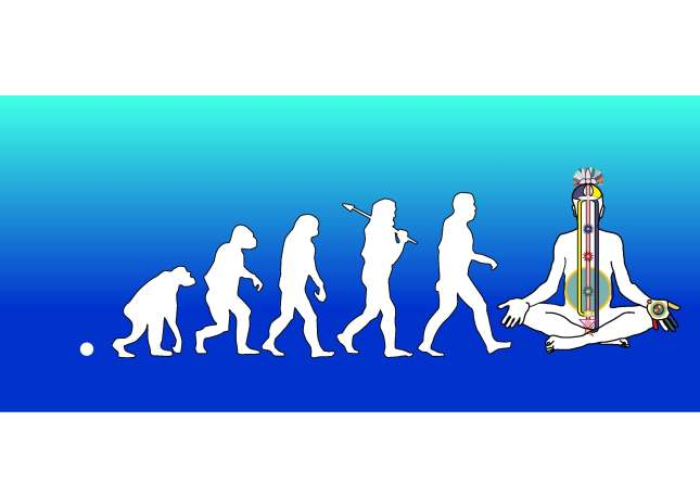 evolutionary steps