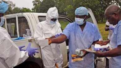 Photo of نيجيريا… وفاة 100 شخص بسبب تفشي حمى لاسا