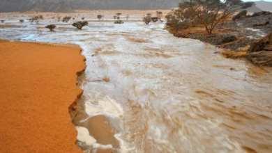 Photo of موريتانيا.. أمطار تكسر حاجز 110 ميليمترات