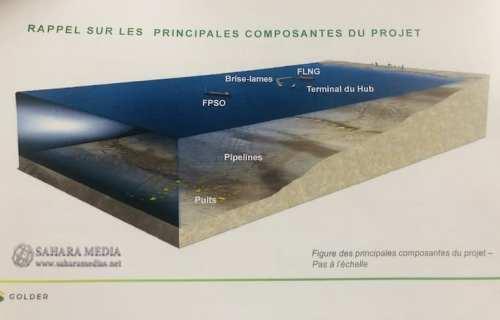 رسم تخيلي عرضته الشركة يوضح مكونات مشروع السلحفاة آحميم (صحراء ميديا)