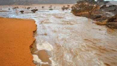 Photo of موريتانيا.. مقاييس الأمطار خلال 24 ساعة الماضية