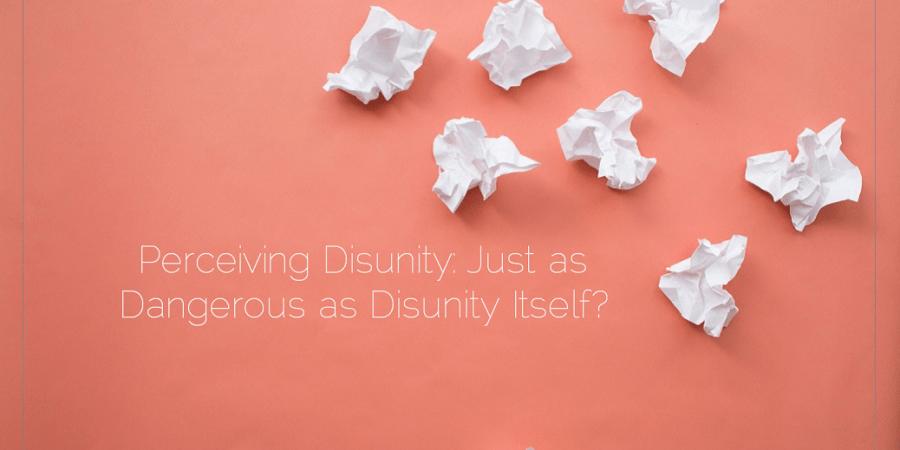 Sahar's Blog 2016 05 24 Perceiving Disunity Just as Dangerous as Disunity Itself