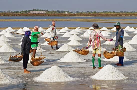 الملح الصوديوم وارتفاع ضغط الدم وامراض القلب صناعة الملح