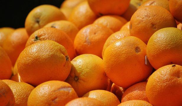 فاكهة البرتقال