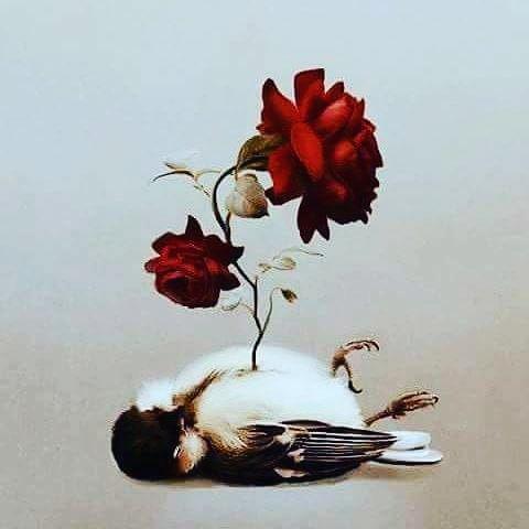 Cemre olsan düşermiydin toprağıma.Müjdelermiydin baharı?Uçuşan sevinçler dökermiydin saçlarıma?Sırılsıklam bir sevdaya saplarmıydın gülüşlerini?Kirpiklerime değermiydi kirpiklerin?Havası, suyu,yöresi olurmuydun yüreğimin?Tutarmıydın nefesini nefesim de ?Ve rengarenk çiçekler bırakırmıydın başucuma?Sende ceplerinde şiirler biriktirirmiydin bana?Yazarmıydın avuçlarına adımı?Uzanırmıydın yıldızlardan öteye?Benim gibi kalkışırmıydın olmayacak işlere?Sevda türküleri dolanırmıydı diline?Adarmıydın ömrünü hiç gelmeyecek birine?Demem o ki gülümSen cemre değilsen bana her mevsim hüzün....! Sinan Yıldızlı/Sahildeki Şair#Şair#Şiir #şiirsokakta#söz#edebiyat #güven #adamgibiadam #sadakat #repost