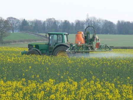 Canola field being sprayed with glyphosate. Is is a weed killer or desiccant?