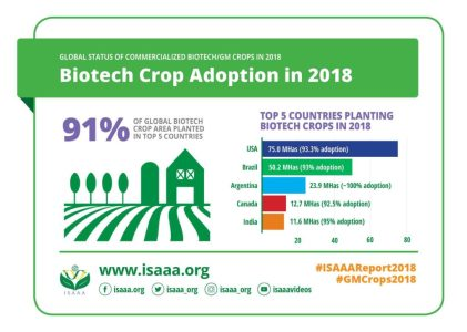 Global Biotech of Crops