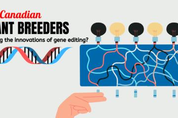 Canadian plant breeding and gene editing