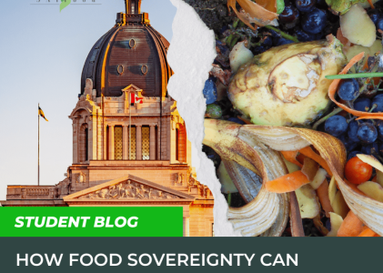 How Food Sovereignty Can Reduce Food Waste In Canada