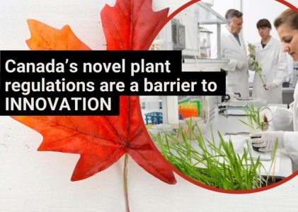 Canada's novel plant regulations are a barrier to innovation