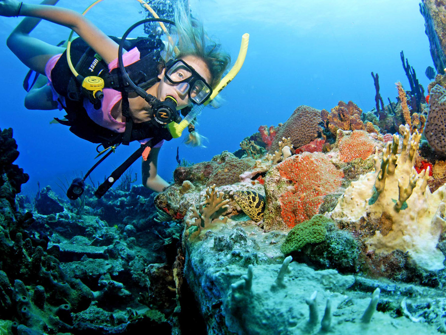 scuba_girl_colorful_coral