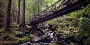 Ravennaschlucht Schwarzwald