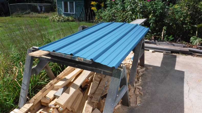 tiny house blue metal roof