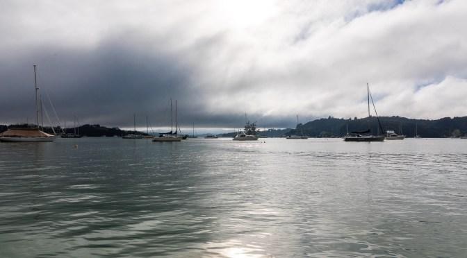 Minerva Reef et l'arrivée en Nouvelle-Zélande : Traversée Tahiti – Nouvelle-Zélande (11)