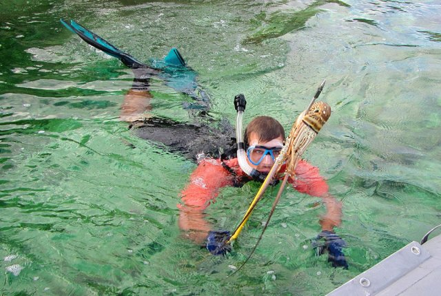 Pole spear fishing in Abacos, Bahamas for lobster