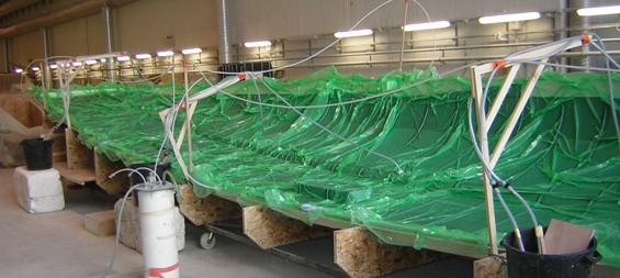 Composite peinture sailwood chantier naval lorient morbihan