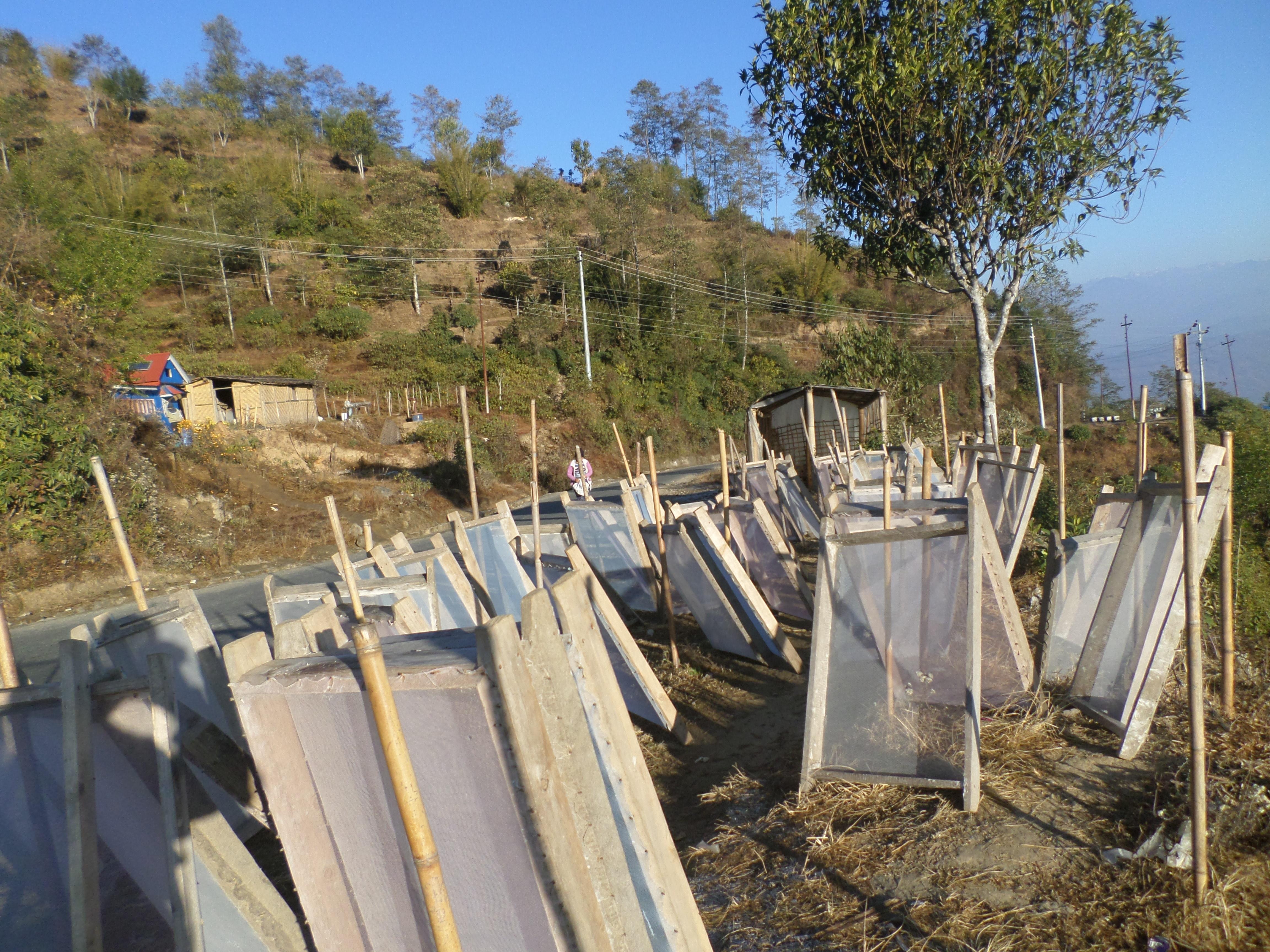 कागजको तयारीः फिदिम नगरपालिका ३ पान्थरका कृषकले पहाडे कागज बनाउने तयारीमा । तस्वीरः फिपराज बेघा ।