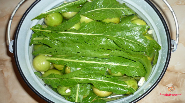 zelenye-pomidory-bochkovye