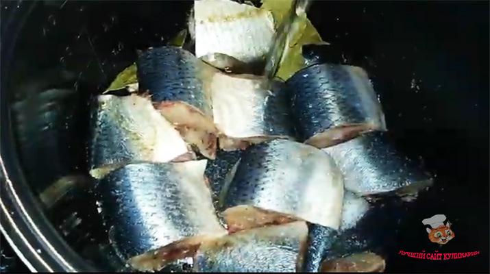 zakyska-iz-ribi2