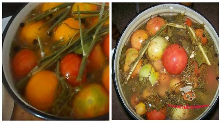 vkusnie-solenie-pomidori3