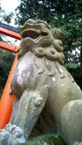 八幡宮の狛犬