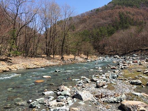 140409長谷黒川