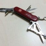 山菜採りとナイフ|フキノトウ、ノカンゾウ