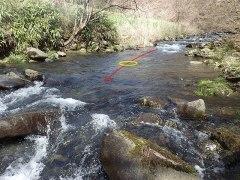 160414熊沢川05