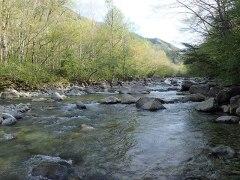 160513王滝白川