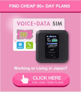 Voice + Data SIM