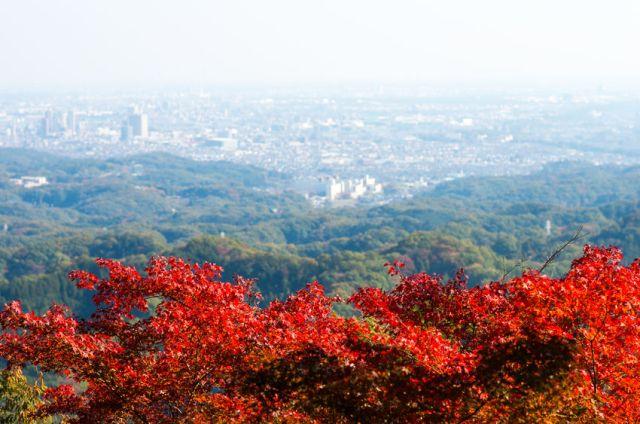 49857835 - takao mountain,tokyo,japan autumn