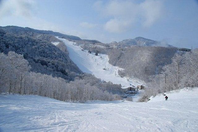 Shiga Kogen Mountain Resort