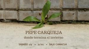 pepe carqueja