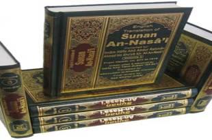 H18-Sunan-Nasai_3D