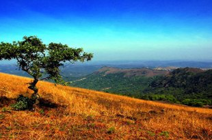 scenery-india