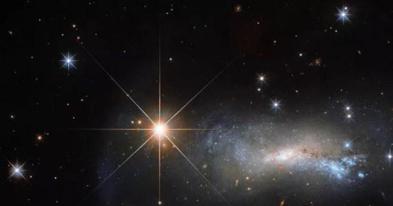 ulama bagai bintang
