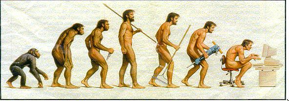 Evolution - Salagram dot Net
