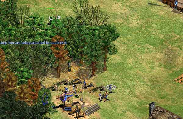 Age of Empires II: Tutorial Guide