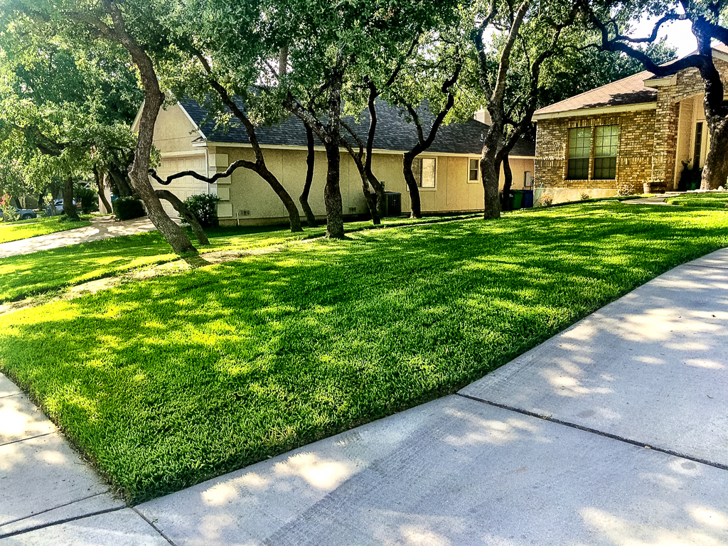 San Antonio Lawn Mowing - Green Lawn