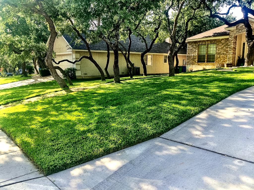 San Antonio Lawn Mowing - Green Lawn