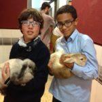 Una de conejos