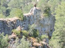 Excursion y acampada al alto Tajo 9605(1)