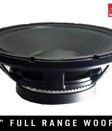 15″ Full Range Pro Speaker