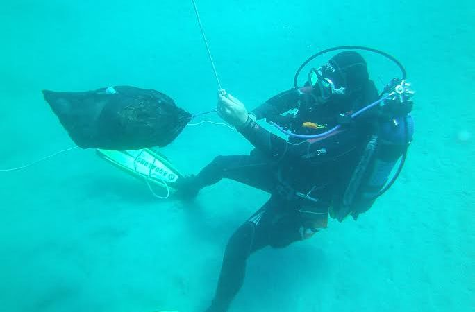 A San Foca pulizia dei fondali marini
