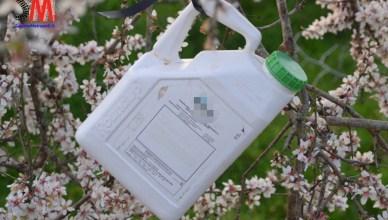 decreto martina pesticidi