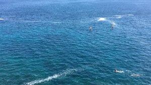 santa cesarea schiuma in mare