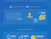 Salesforce Job Market Summary – Infographic