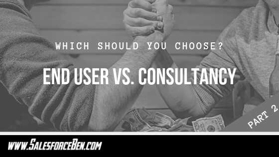 End-User vs. Consultancy: Which Should You Choose? Part Two