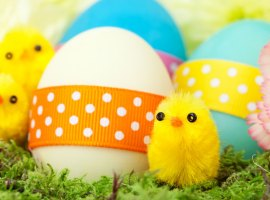 Nine things to do in Salford during the Easter holidays