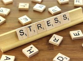 Where to seek help in Salford during Stress Awareness Month